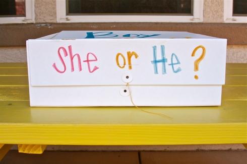 she or he